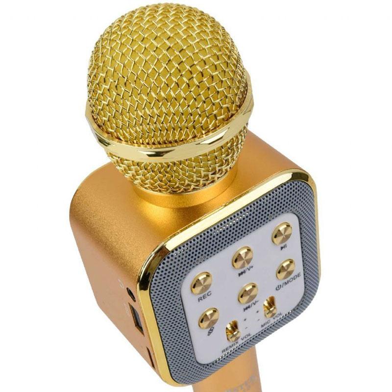 Kareoke mikrofon3