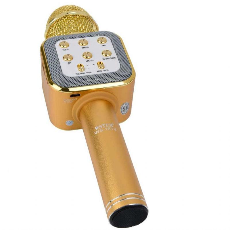 Kareoke mikrofon6